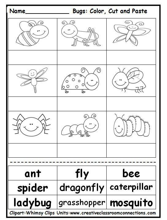 Insects Worksheets For Kindergarten Pin On Science In 2020 Insects Preschool Insects Kindergarten Insect Activities