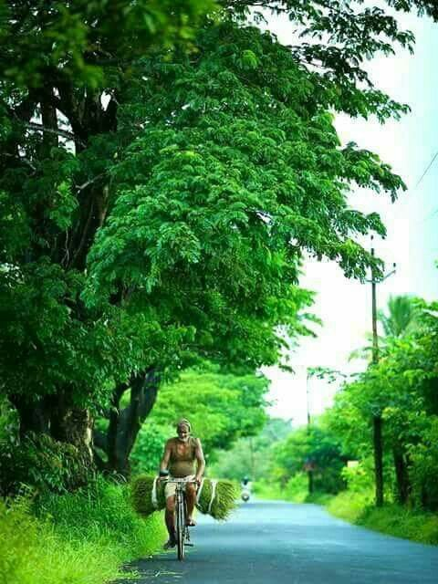 Pin By Geeta Anil On God S Own Country Beautiful Landscape Photography Bangladesh Travel Indian Village