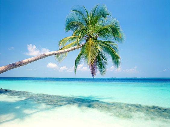 América é o único país rico que não garante a férias pagas nem feriados.