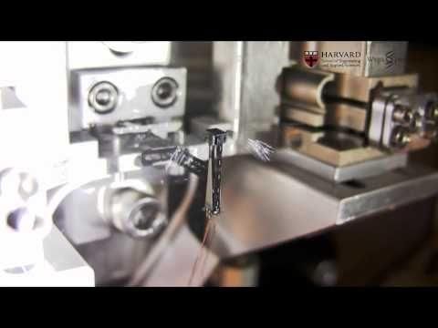 Winzige Roboterfliege schwirrt durchs Labor