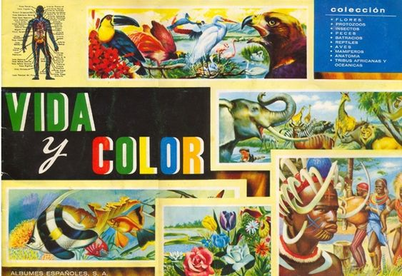 Álbum de cromos Vida y color. Aún lo guardo pero sin el cromo imposible (ese que nunca fabricaron)