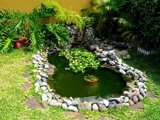 Como hacer estanques para tortugas de agua buscar con - Modelos de fuentes para jardin ...