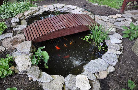 Garden pond needs shade ponds pinterest gardens for Pond shade ideas