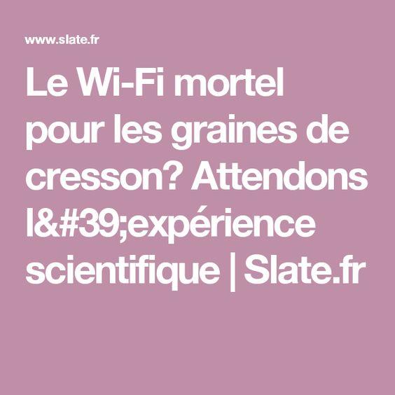 Le Wi-Fi mortel pour les graines de cresson? Attendons l'expérience scientifique | Slate.fr