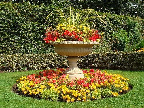 Rock Garden Ideas Flower Photograph