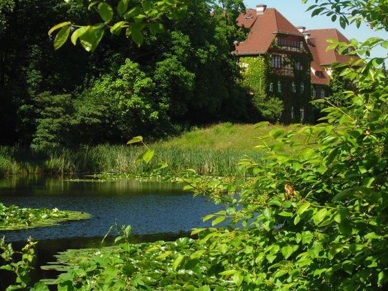 botanischer garden1
