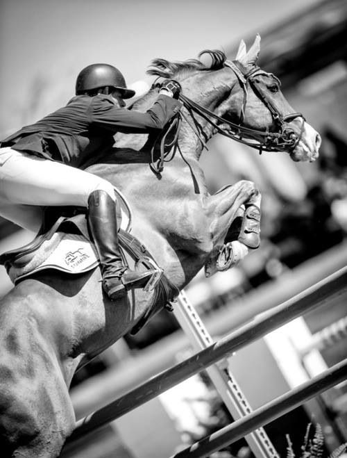 Cool pic of a jockey on a horse!
