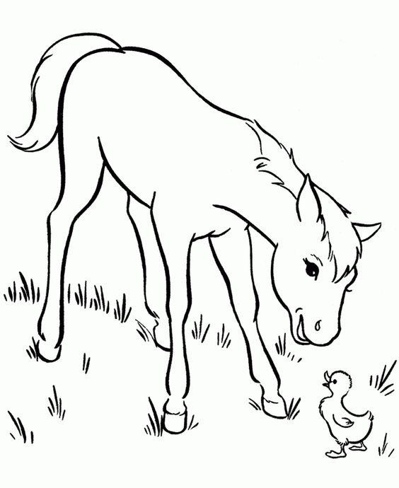 Coloriage cheval sur ordinateur xoomy pinterest - Ordinateur coloriage ...