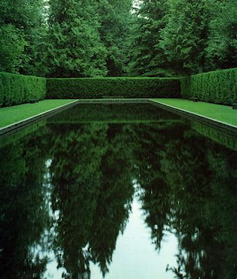 downright viridescent (reflecting pool)