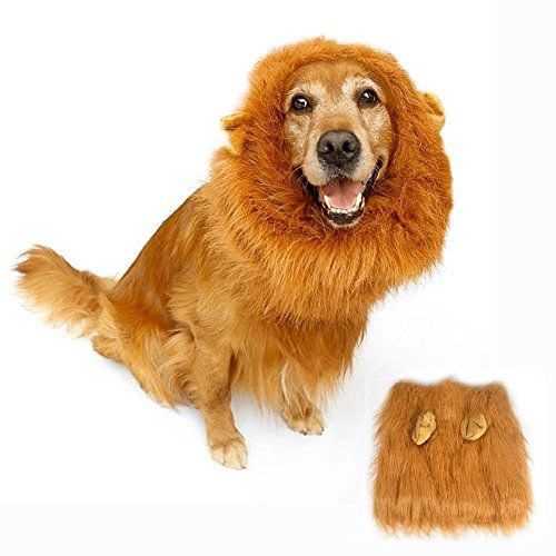 Lion Mane Costume For Dog Bukm Cute Lion Wig Hats For Medium To Large Sized Dogs Pet Festival Cosplay Party Fancy Hair Dog Clothes Fo Cute Lion Dogs Pets