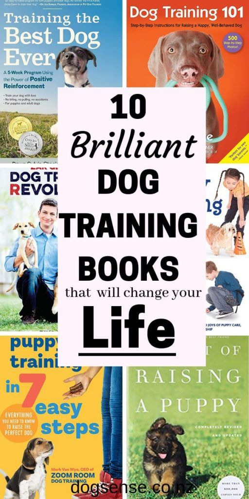 Dog Training 10 Of The Best Dog Training Books For Puppys And