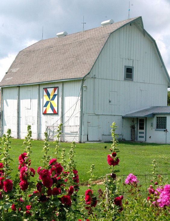 My very favorite flower - Hollyhocks near a beautiful barn.: Barnquilt, Barns Farm,  Thatched Roof, Hollyhock, Quilt Block, Farmhouse, Barn Quilt