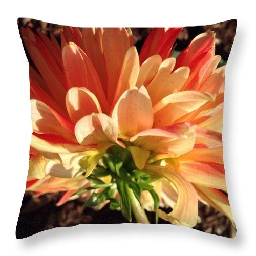 Summer Warmth Orange Dahlia Throw Pillow by Anna Porter