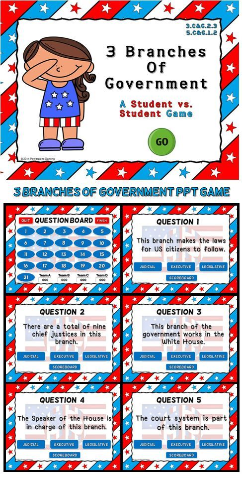 The executive branch of state government - Essay Example