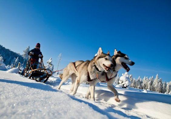 Vielseitige Aktivitäten in Skellefteå - http://www.nordicmarketing.de/vielseitige-aktivitaten-in-skelleftea/