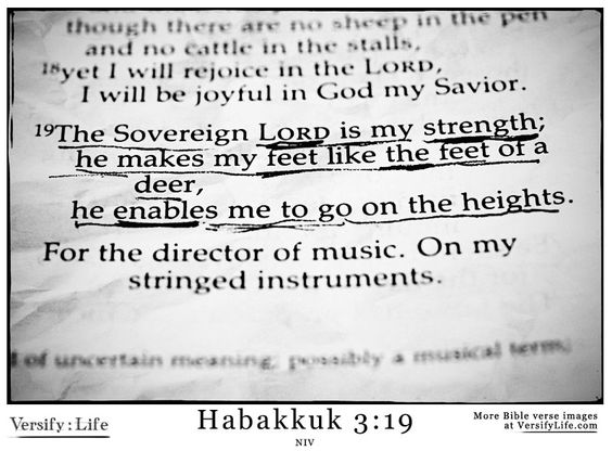 """The Sovereign Lord is my strength;  he makes my feet like the feet of a deer, he enables me to tread on the heights. For the director of mu..."