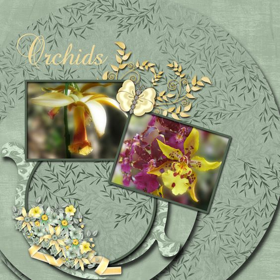 Kit Friends by Touched By A Butterfly Font Baroque Script - butterfly template