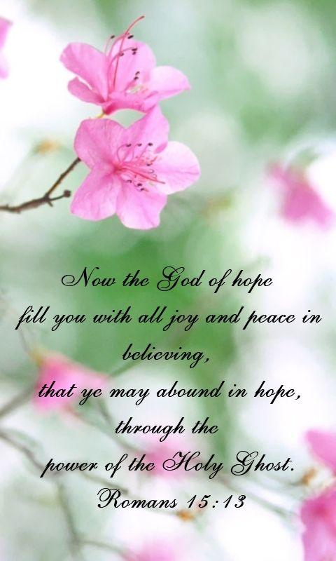 Romans 15:13 KJV. Scripture.: