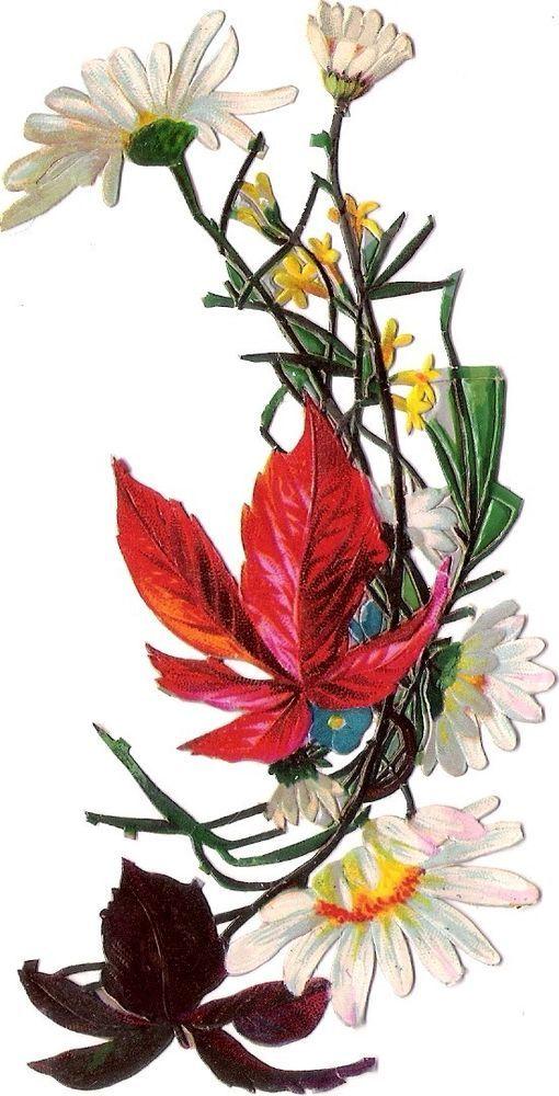 Oblaten Glanzbild scrap die cut chromo Blume  13,7cm flower fleur: