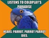 Parrot Dies #so funny #comics #lol #lmfao