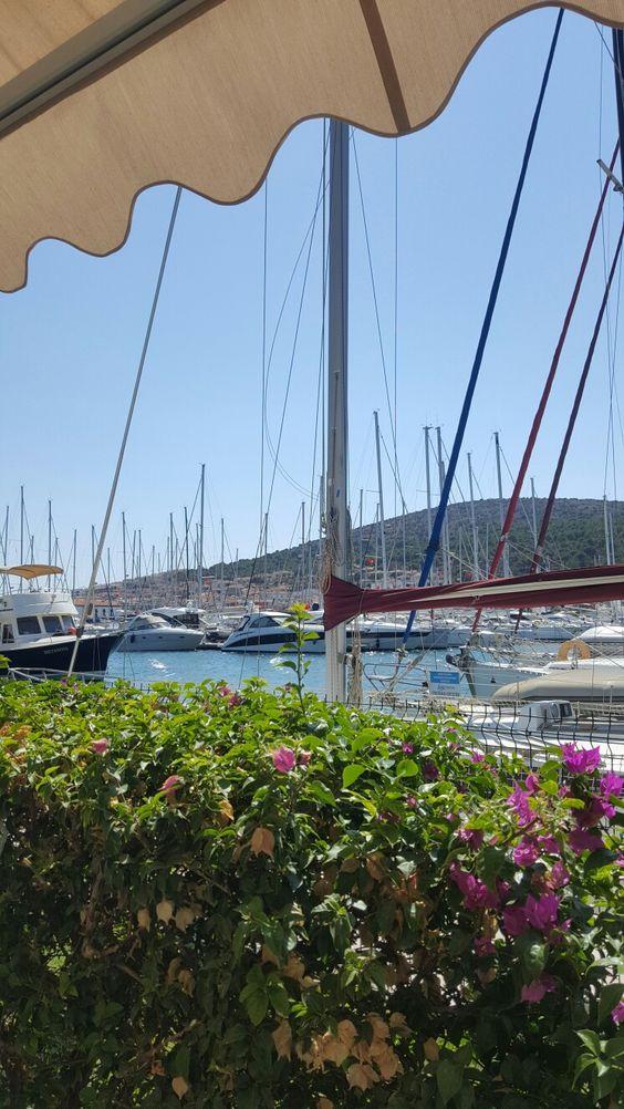 Alaçatı, deniz, çicekler, mavi yeşil mor uyumu, tekne, yat...