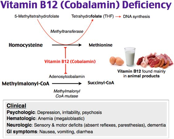 Vit B12 Deficiency.  Sx. paresthesias, ataxia, glossitis, and megaloblastic anemia (eg, weakness, fatigue, easy bruising).  Lab- Increased methylmalonic acid (MMA) and homocysteine (HC).  MCC of pernicious anemia.  Found in strict vegans.