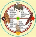medicine wheel pictures - Bing Images