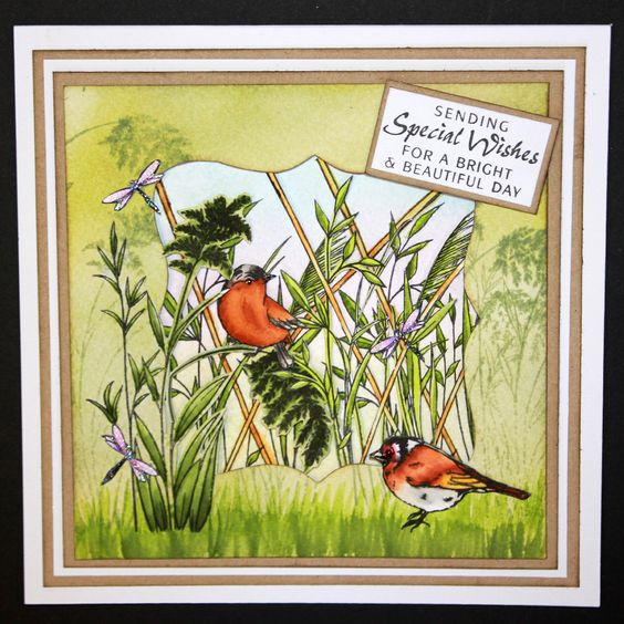 This is the gorgeous new Birds & Grasses set designed by Sharon Bennett for Hobby Art. Clear set contains 8 stamps. Overall size of set - 100mm x 260mm approx. All our clear stamps are made with photopolymer resin. As seen on Create & Craft. This Stunning card was made by Sally Dodger:
