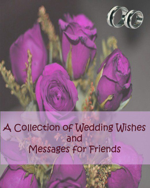 A Collection Of Wedding Wishes And Messages For Friends