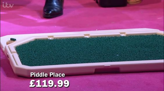 ...along with the Piddle Place...  http://www.findmeagift.co.uk/gifts/piddle-place-pet-training-mat.html