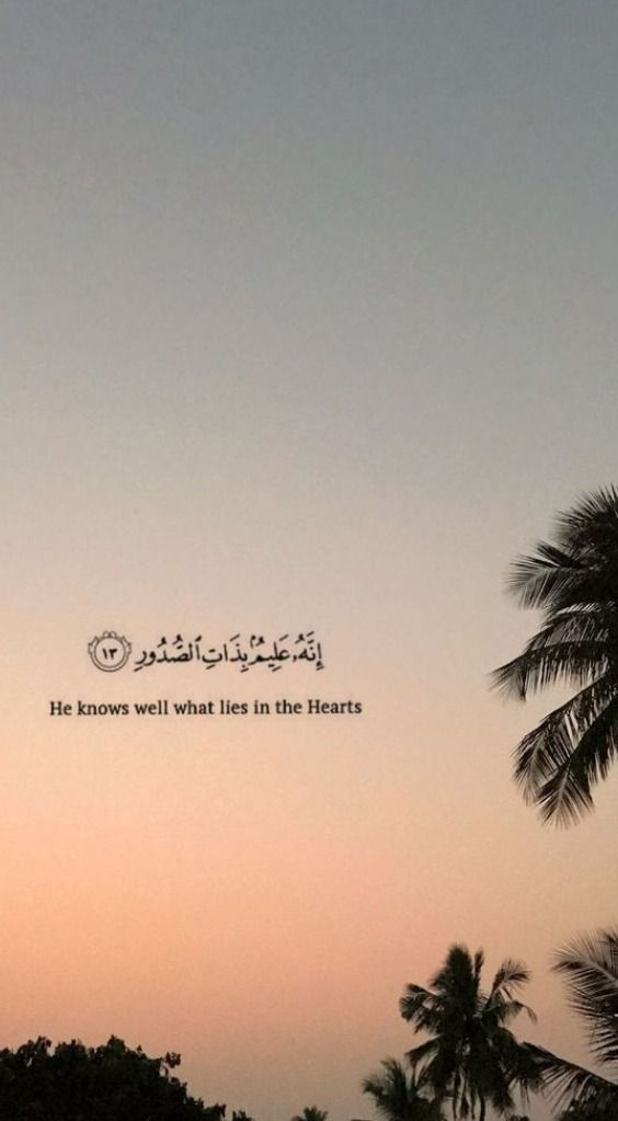 Pin On Islamic Wallpaper Beautiful wallpaper quranic quotes