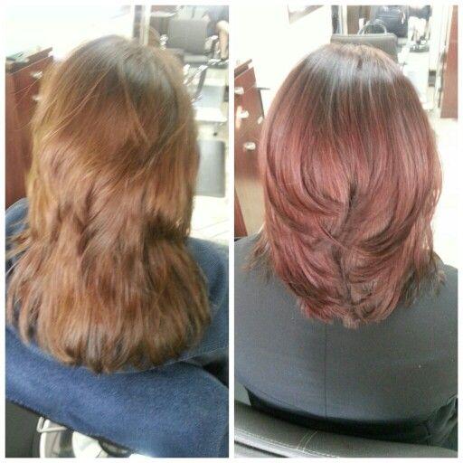 From golden brown to dark cherry brunette!! Schwarzkopf ...