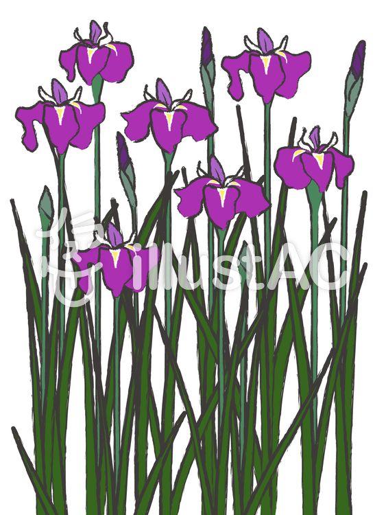 無料の印刷用ぬりえページ 19年の最高 5月花 イラスト 無料 花 イラスト 花 イラスト 無料 無料 イラスト