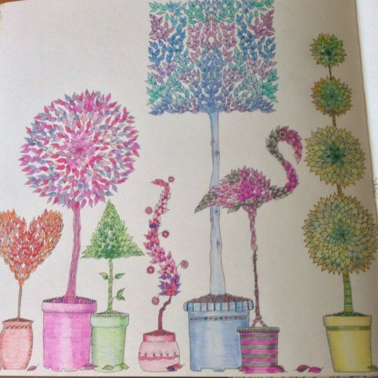 Johanna Basford | Picture by PENNY PROCTOR | Colouring Gallery