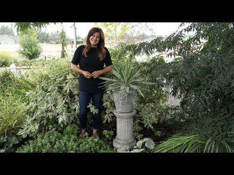 Adding Some Gorgeous Concrete Pieces To My Garden Garden Answer Youtube Garden Plants Landscape
