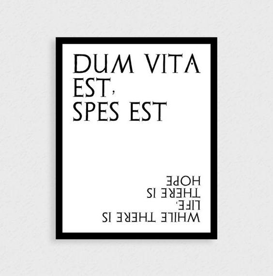 Latin Wall Quotes