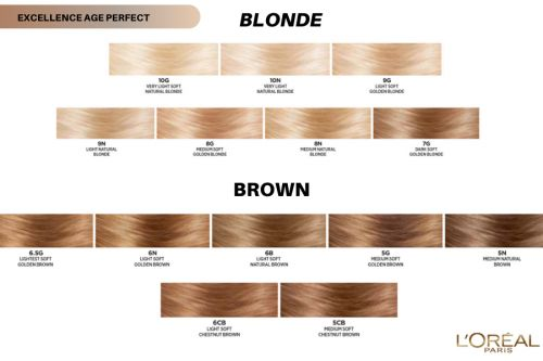 Excellence Age Perfect In 2021 Hair Color Chart Perfect Hair Color Loreal Hair Color