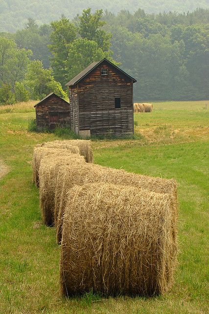 Old barn and hay bales.