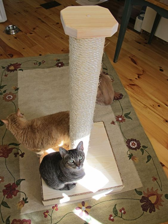 Enter to win this awesome scratching post and perch from Mountain Cat Trees!