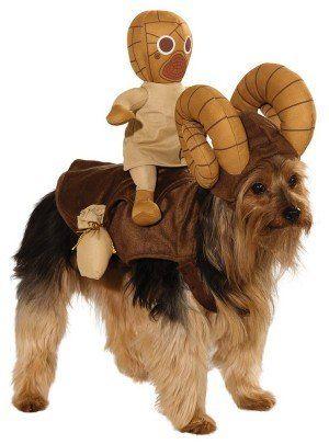 Trasforma il tuo cane in un Bantha e il tuo gatto in un leone