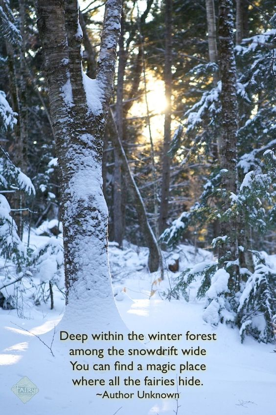 Fairies in the snowdrift Quote: