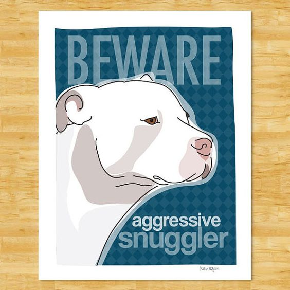 pit bull love, this looks like my Tucker! Totally his personality!