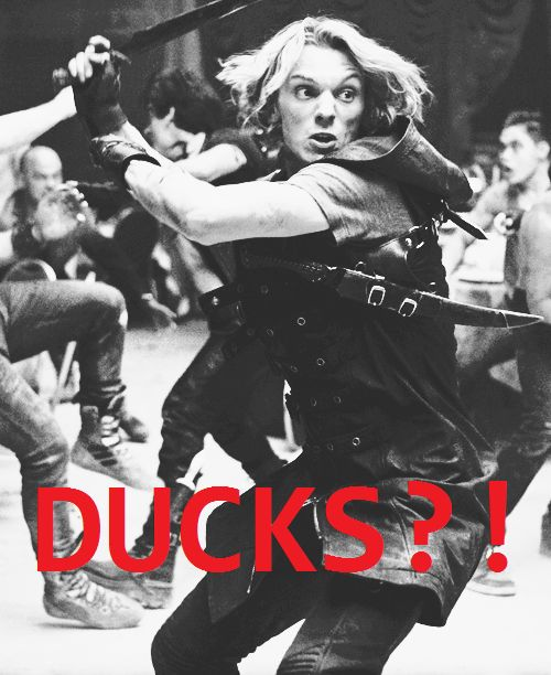 never trust a duck (will and jace)