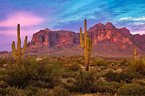 Rockhounding In Arizona Arizona Rocks Outdoor Paradise Rock Hounding