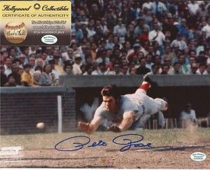 Autographed Pete Rose Photo – Sliding 8×10 Hollywood Collectibles Coa – Autographed MLB Photos