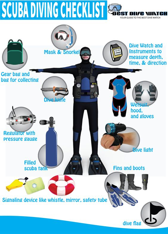 Scuba equipment checklist scuba diving gear scuba diving for Dive system tech fin