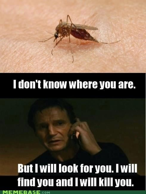 1022e1a0f165c74737676a19089baadb funny picture quotes funny fails suck while you still can silly mosquito jokes pinterest