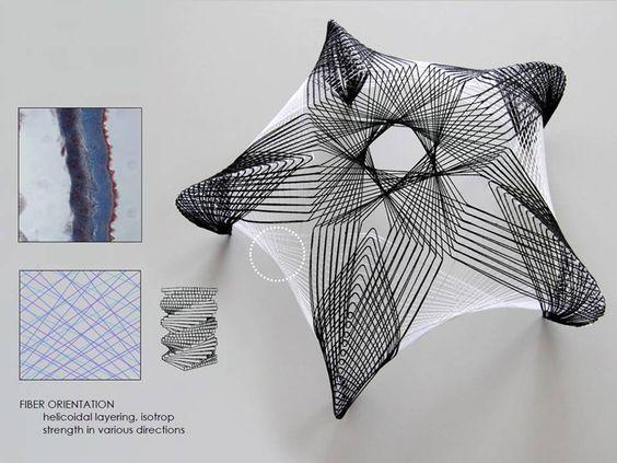 Carbon fiber, Pavilion and Fiber on Pinterest