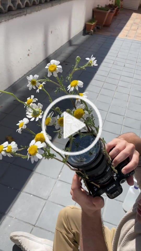 Tiktok Bio Ideas Youtube Video Link Cool Photos Youtube Videos