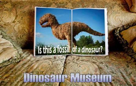 福井県にある恐竜博物館・・・なかなか面白いですよ!  timein.jp